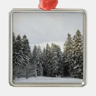 Winter Landscape near Koenigsfeld, Black Forest, Christmas Ornament