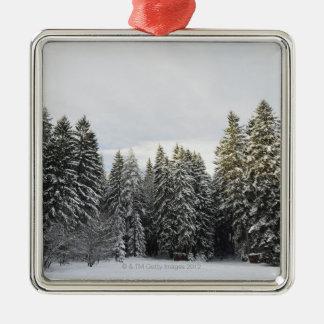 Winter Landscape near Koenigsfeld, Black Forest, Silver-Colored Square Decoration