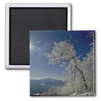 Winter landscape, New England Refrigerator Magnets