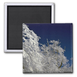 Winter landscape, New England, U.S.A. Winter Fridge Magnets
