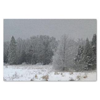 Winter Landscape Tissue Paper Gift Wrap