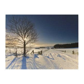 Winter Landscape Wood Wall Art