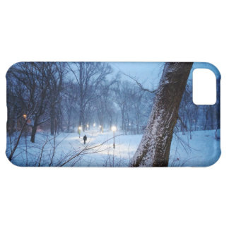 Winter Lights On A Winding Path iPhone 5C Case