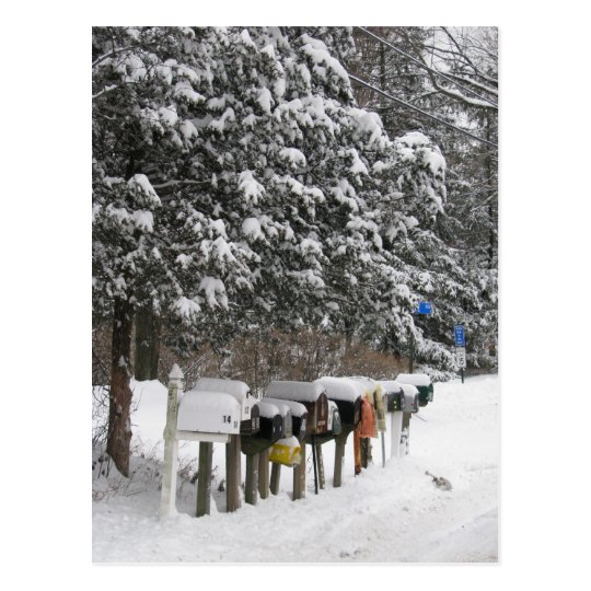 Winter Mail Boxes Holiday Post Card