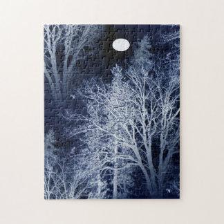 Winter Moon... Jigsaw Puzzle