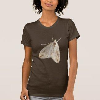 Winter Moth T Shirt