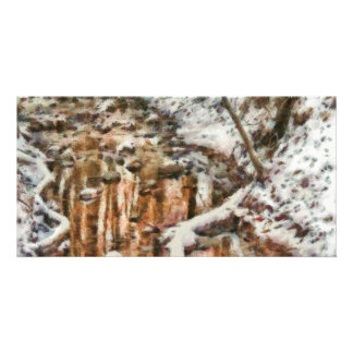Winter - Natures Harmony - Painted Photo Greeting Card