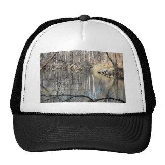 Winter on the Creek Cap
