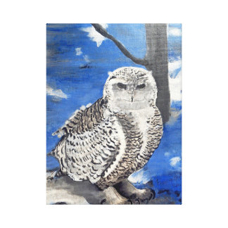 winter owl. canvas print
