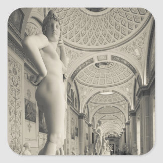 Winter Palace, Hermitage Museum, statue gallery 2 Square Sticker