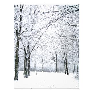 Winter park 21.5 cm x 28 cm flyer