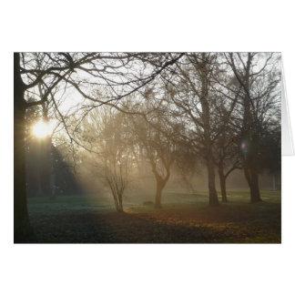 'Winter Park' Notecard Note Card