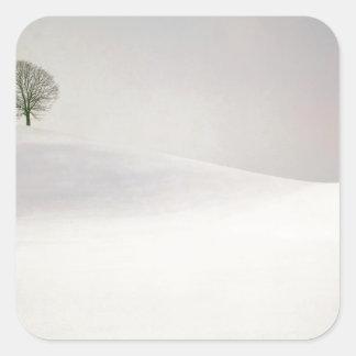 Winter Peaceful Season Near Hirzel Switzerland Square Sticker