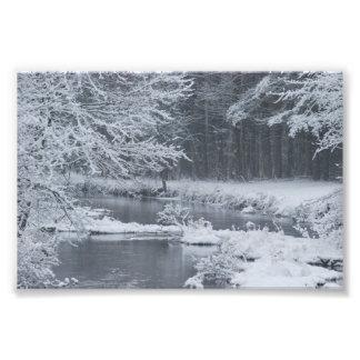 Winter Photo Print