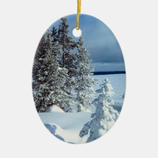 Winter Photo Template Christmas Ornament