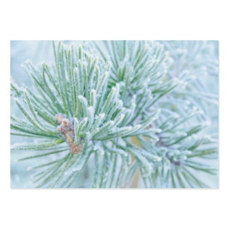 Winter Pine Pack Of Chubby Business Cards