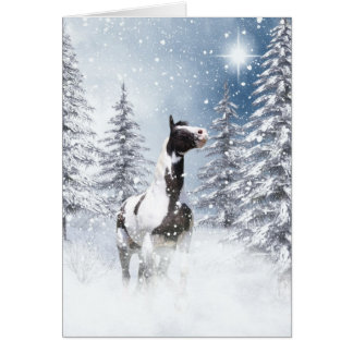 Winter pinto horse greeting card