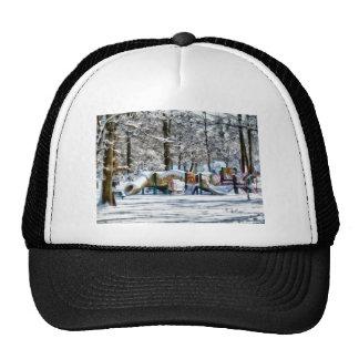 Winter Playground Cap