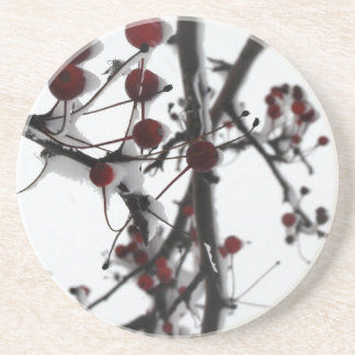 Winter Red Berries Coaster