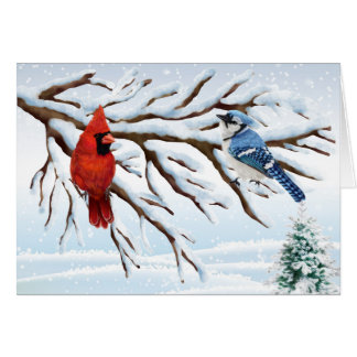 Winter Red Cardinal and Blue Jay Note Card