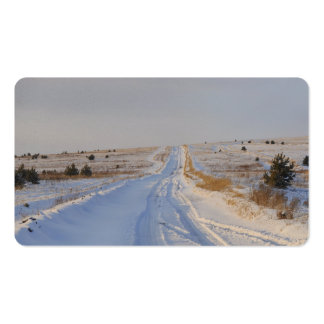 Winter Road in the Fields Pack Of Standard Business Cards