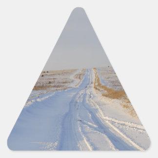 Winter Road in the Fields Triangle Sticker