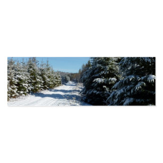 Winter Road Pack Of Skinny Business Cards