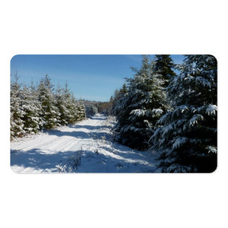 Winter Road Pack Of Standard Business Cards