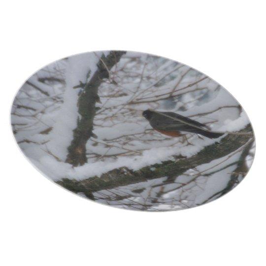 Winter Robin Plate