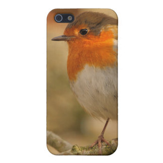 Winter Robin Profile iPhone 5/5S Cover