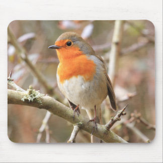 Winter Robin Redbreast Mouse Mat