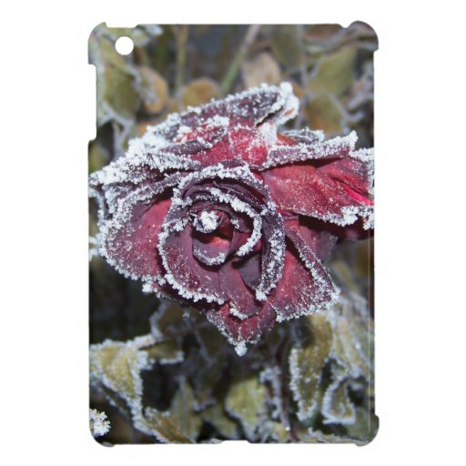 Winter Rose Cover For The iPad Mini