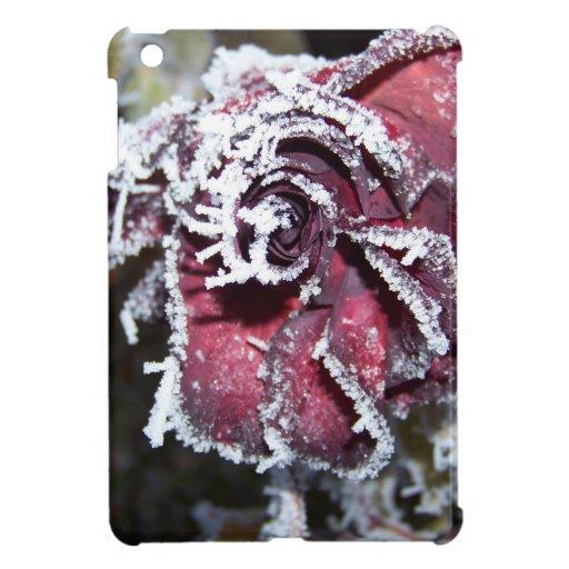 Winter Roses iPad Mini Cover