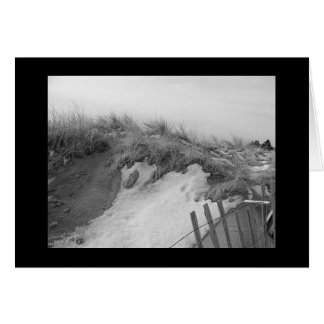 Winter Sand Dunes Card