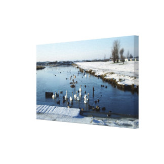 Winter scene Cleethorpes boating lake Humberston Stretched Canvas Print