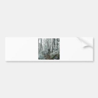 Winter Scene Freezed Forest Bumper Sticker