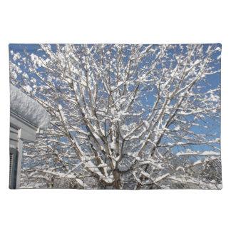 winter scene placemat