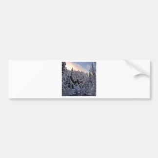 Winter Scene Total Whiteout Bumper Stickers