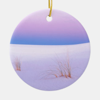 Winter Scene Tranquility Sands New Mexico Christmas Ornament