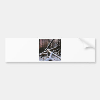 Winter Scene White Powder Woods Bumper Stickers
