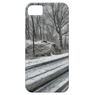 Winter scenery road Iphone case 5/5S Case For The iPhone 5