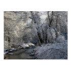 Winter Scenic Landscape Postcard