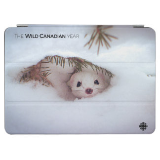 Winter - Short-Tailed Weasel iPad Air Cover