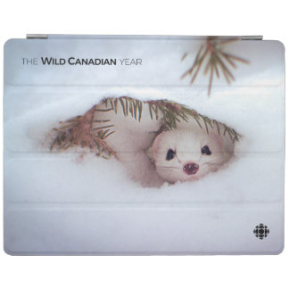 Winter - Short-Tailed Weasel iPad Cover