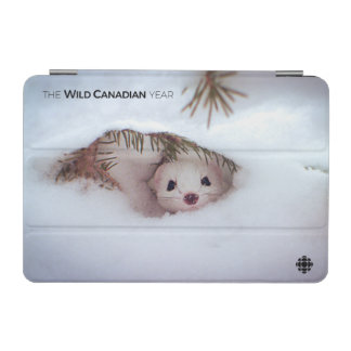 Winter - Short-Tailed Weasel iPad Mini Cover
