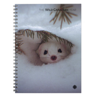 Winter - Short-Tailed Weasel Notebooks