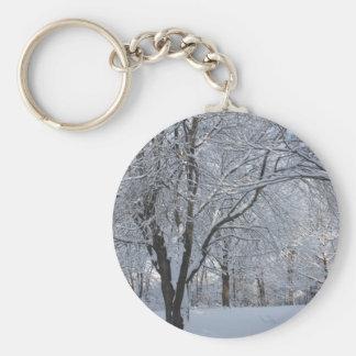 Winter Shroud Basic Round Button Key Ring