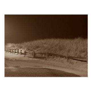 Winter Silence Postcard