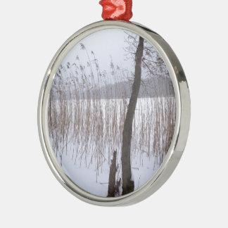 Winter Silver-Colored Round Decoration