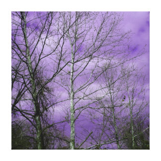 Winter sky with bare trees canvas canvas print